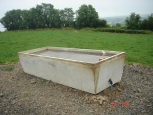 Drinking trough in situ