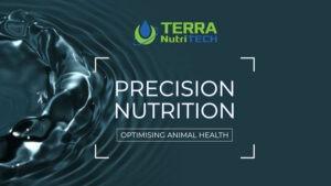 terra-nutritech-minerals-for-cows